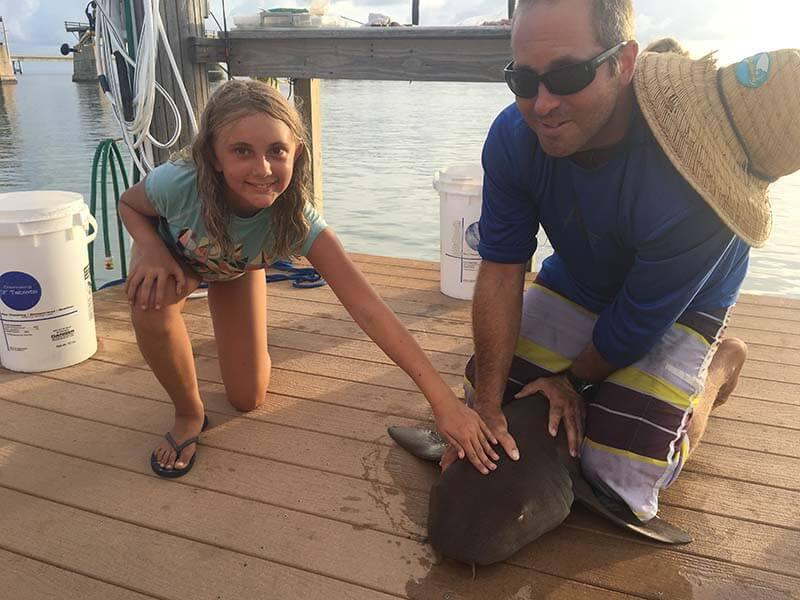 2016 Shark Tag 8-24