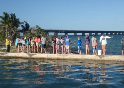 Pigeon Key Marine Science Education